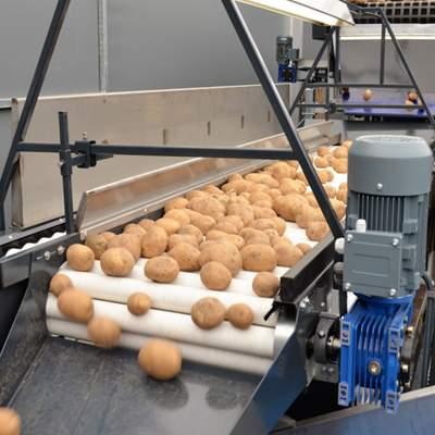 Технологическое оборудование для переработки овощей с поля