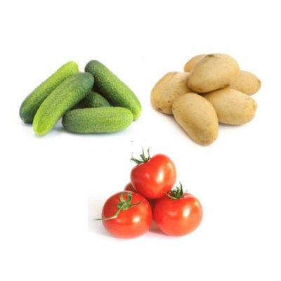 Оборудование переработки и упаковки овощей, фруктов