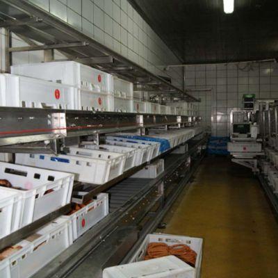 Транспортировка пластиковых ящиков на мясокомбинате