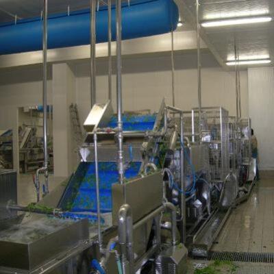 Линия переработки зелени в работе